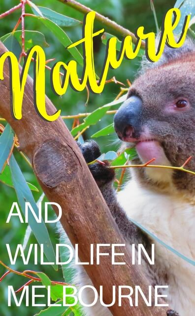 Best nature and wildlife attractions in Melbourne
