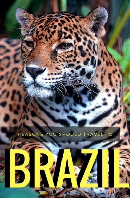 Reasons to visit Brazil