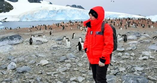 First-Timers to Antarctica: Don't Forget These Important 5 Things