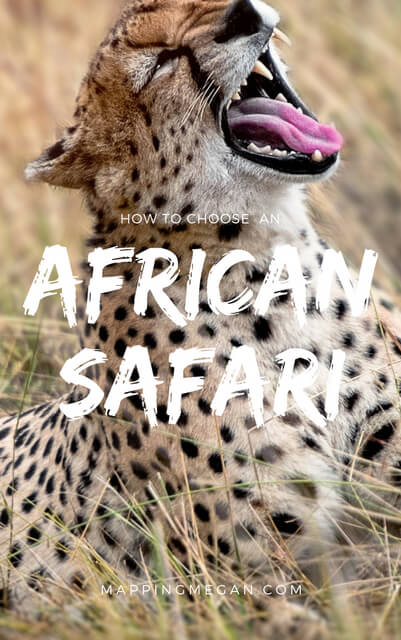 If you're wondering how to choose an African Safari this post will guide you in your decision making; all the things you need to consider to make it great!