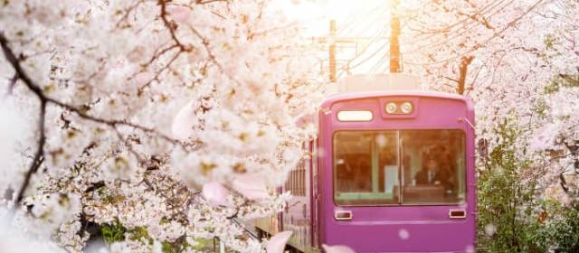 A Detailed Guide on Japan Rail Passes (The Most Efficient Way to Get Around in Japan)
