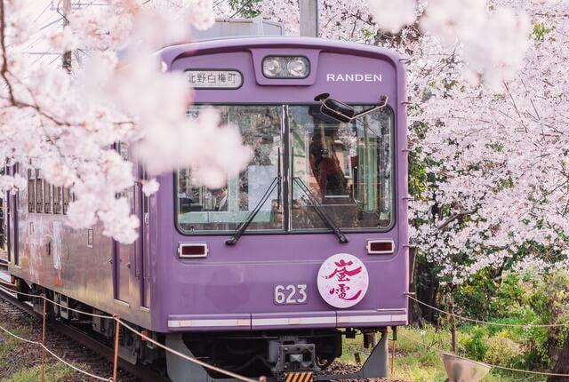 Train Japan JR Passes RF