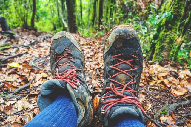 Hiking shoes jungle forest RF