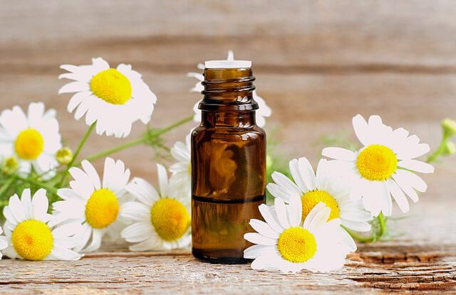 Roman chamomile essential oil RF