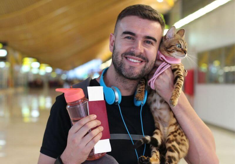 Traveling cat pet RF