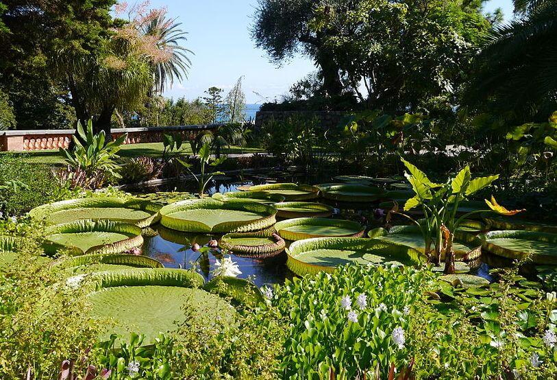 Menton Botanic Garden France