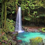 Top 5 Things to do in Dominica
