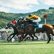 Africa's Best Horse Racing Destinations and Top Races to Visit