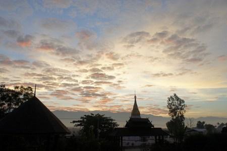 Pristine Lotus Inle Lake Burma