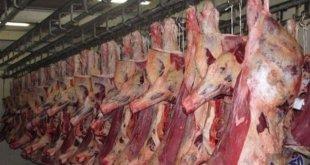 أسعار لحوم الأبقار تصل إلى مائة درهم للكيلوغرام الواحد