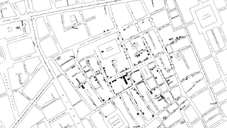 John Snow's cholera map (detail)