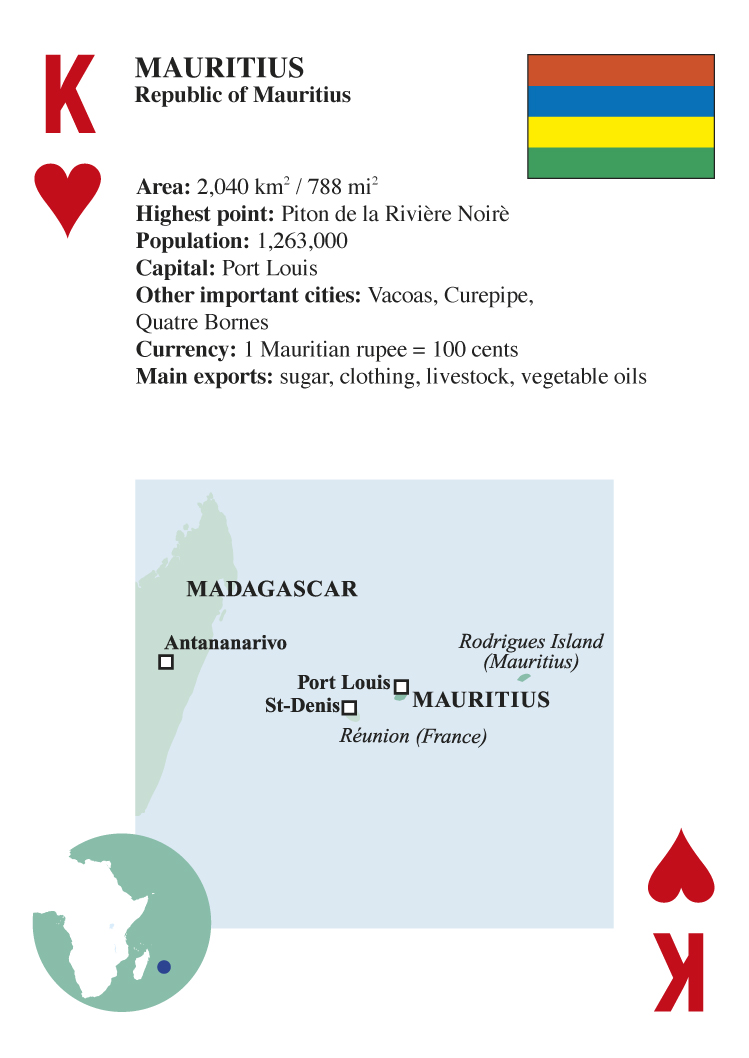 Africa Playing Cards 54 Standard Size Playing Cards