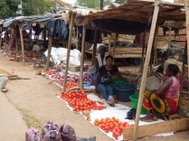 Some of the market stalls