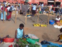 The vegetable market