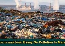 प्रदूषण वर मराठी निबंध Essay On Pollution In Marathi