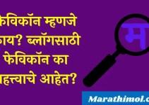 फेविकॉन म्हणजे काय? ब्लॉगसाठी फेविकॉन का महत्त्वाचे आहेत? What Is Favicon In Marathi