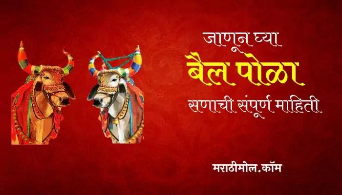 Pola Festival Information In Marathi
