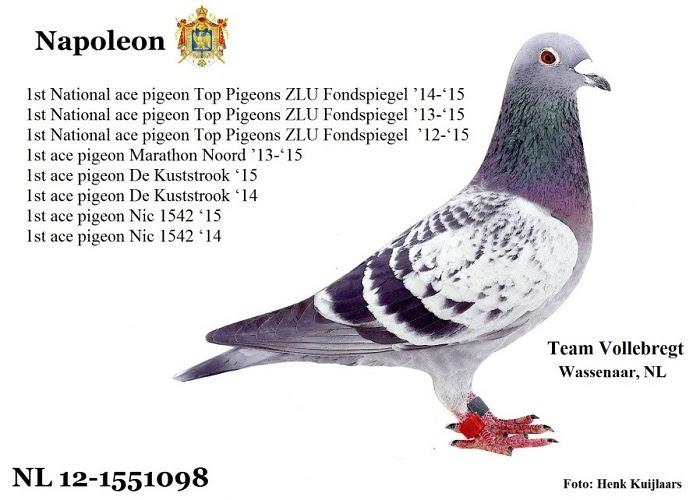 Team Vollebregt, Wassenaar … Toppers uit het Westen !! (deel 3 en Slot)