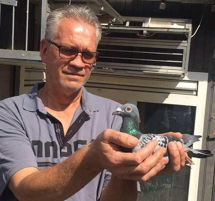 Comb. Gielen-Cop, Breda winnen Bordeaux in Brabant en Limburg