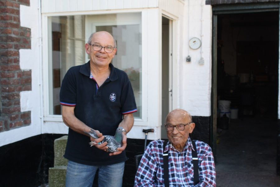 Harry en Roger Wijnands, Maastricht, winnen nationaal Agen ZLU oude duiven