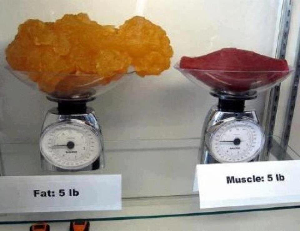 10 Kilo abnehmen in 4 Wochen