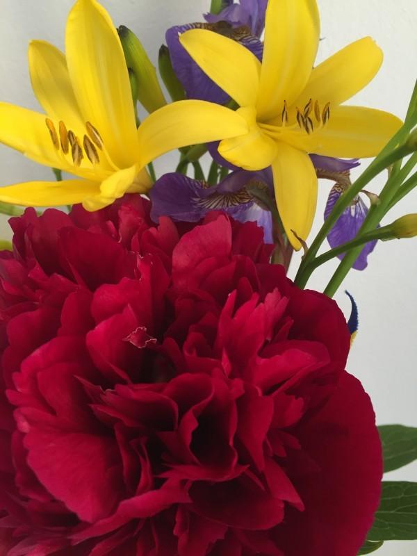 Vackra blomster från Kattis. Foto: privat