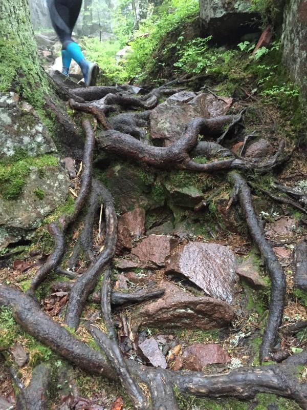 Janne på väg uppför. Teknisk terräng med hala rötter. Foto: privat