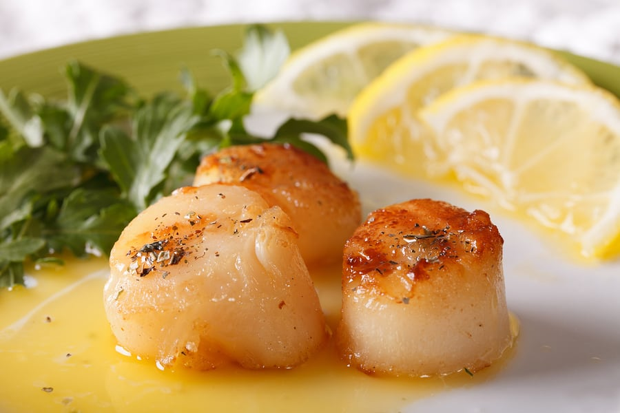 Fried scallops with sauce and lemon on a plate macro.
