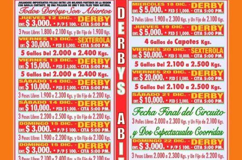 derby gallos feria piñata acolman 2019
