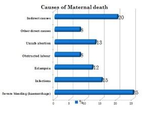 Maternal Death Chart