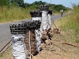 Malawi Law