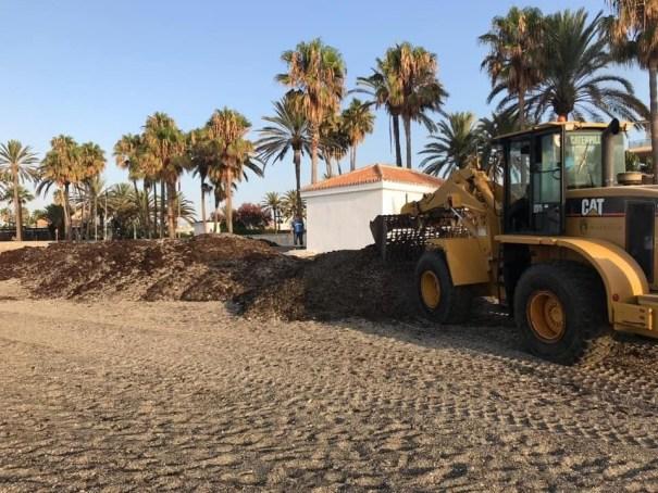 Imagen de las labores de retirada de algas facilitada por el Ayuntamiento de Marbella.