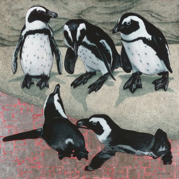 Marc Alexander | African Penguins