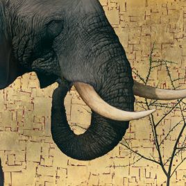 Marc Alexander | Mighty Tusker | In The Balance Exhibit