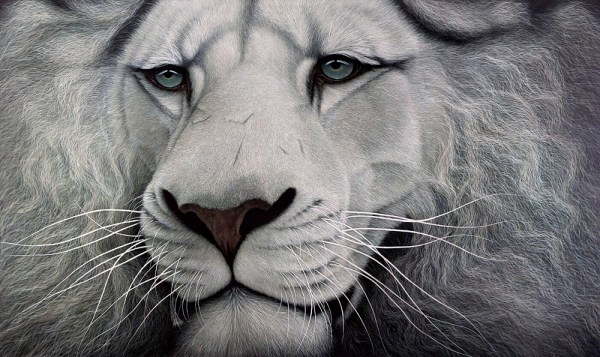 Marc Alexander | White Lion | In The Balance