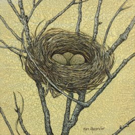 Marc Alexander | Birds Nest I | The Secret Forest