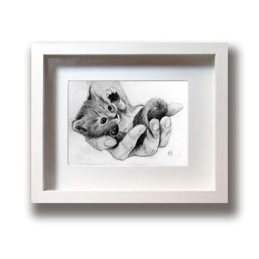 Kitten – Original Drawing