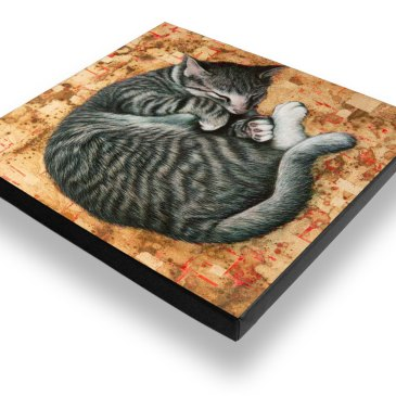 Sleeping Cat – Archival Canvas Print Stretched