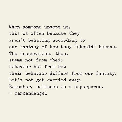 "When someone upsets us, this is often because they aren't behaving according to our fantasy of how they ""should"" behave. The frustration, then, stems not from their behavior but from how their behavior differs from our fantasy. Let's not get carried away. Remember, calmness is a superpower."