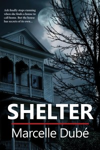 shelter-sw-cover