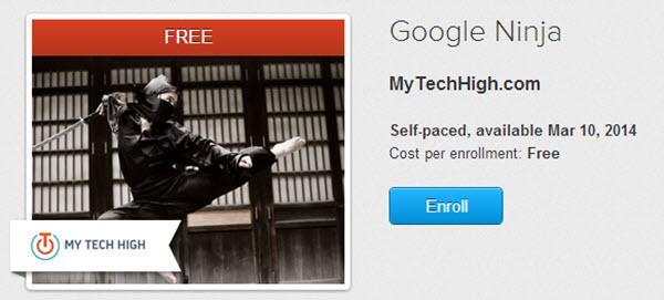 Google Ninja