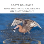 9 motivational essays bourne
