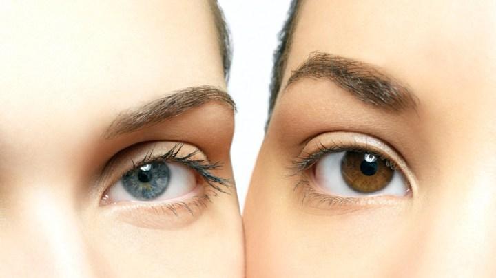 Brown-blue-eyes