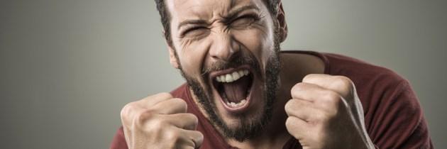 La ira–Parte I: 6 Lecciones de un caso extremo