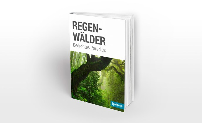 eBook – Regenwaelder