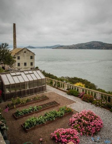 Espace vert à Alcatraz