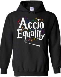 Accio Equality Hoodie