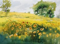Sunflower Season; Honorable Mention, Rice Gallery National Juried Plein Air