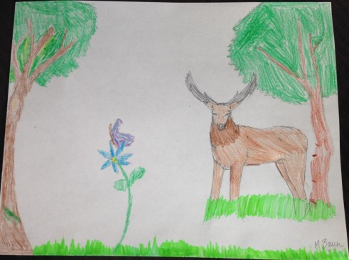 stag drawing, art