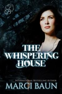 a paranormal, urban fantasy novel